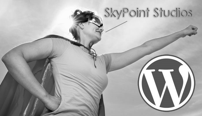 SkyPoint Studios WordPress Super Hero