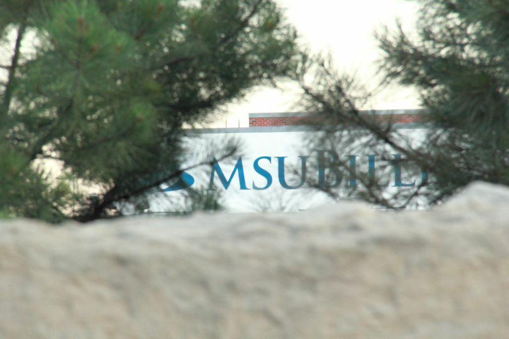 MSU through the pines