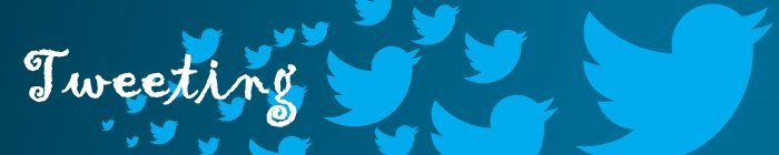 Twitter Tweeting Birds Banner