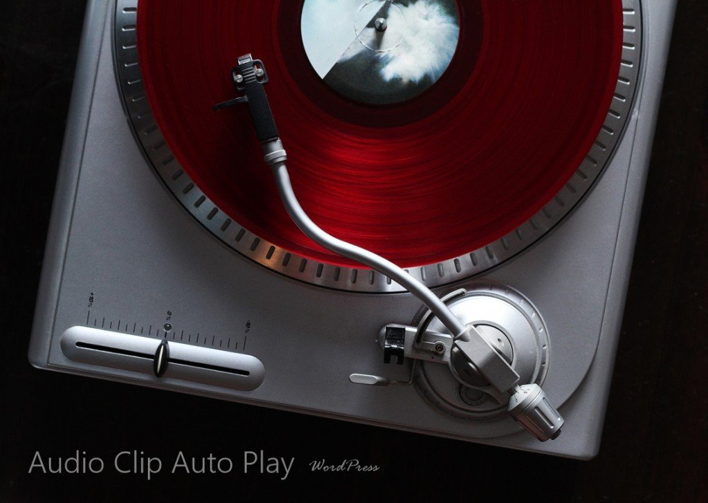 Audio Clip Auto Play WordPress by SkyPoint Studios Web Design Billings MT