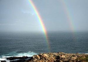 Rainbow Colors Web Design