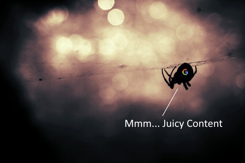 Mmm... Juicy Content Google Search Spider SEO